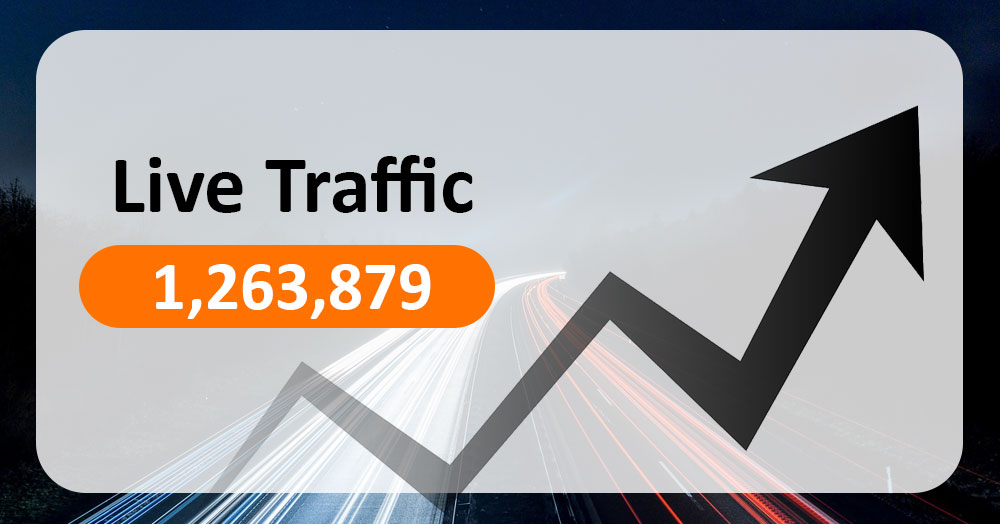 Traffic Bot