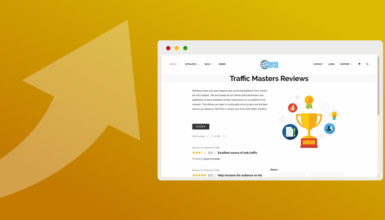 Traffic Masters Review